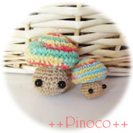 pinoco17